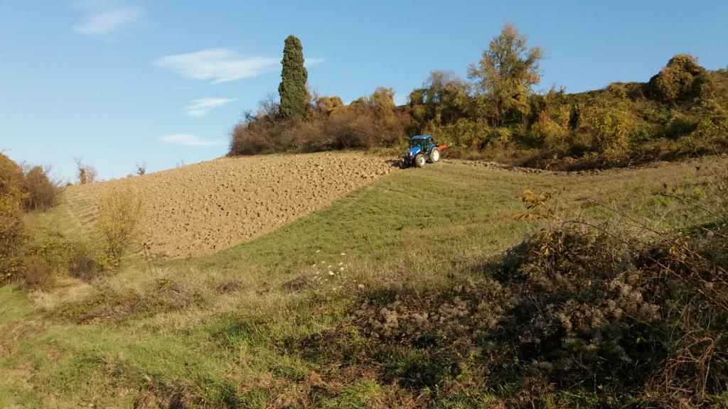 Agricoltura Parco della Chiusa